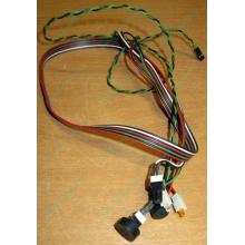 Светодиоды в Липецке, кнопки и динамик (с кабелями и разъемами) для корпуса Chieftec (Липецк)