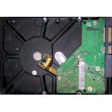 Б/У жёсткий диск 500Gb Western Digital WD5000AVVS (WD AV-GP 500 GB) 5400 rpm SATA (Липецк)
